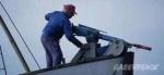 Deadly harpoon gun with explosive (Greenpeace)