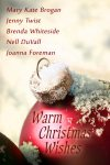 The novel Warm Christmas Wishes